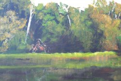Glenelg River 2