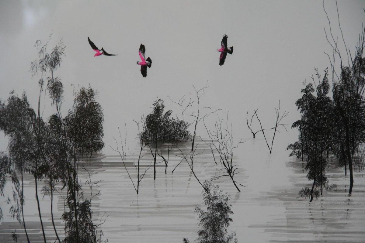 Galahs Lake Menindee, drawing by artist Heather Wood