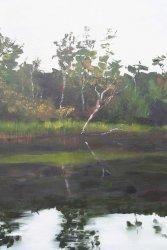 Glenelg River 4