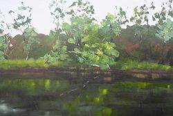 Glenelg River 5