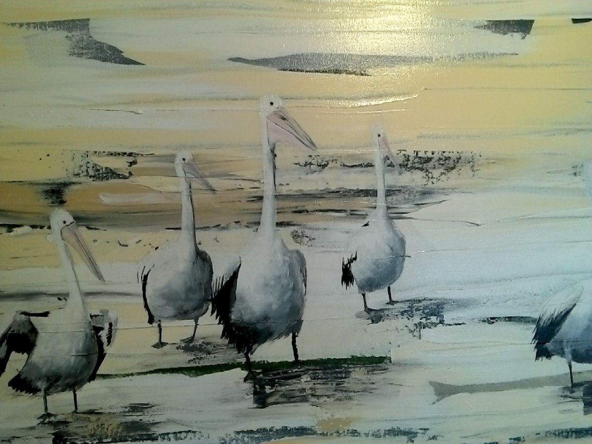 Pelican Picture 2, painting by artist Heather Wood