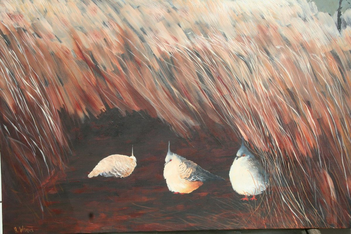 Spinifex Pigeons 2, painting by artist Heather Wood