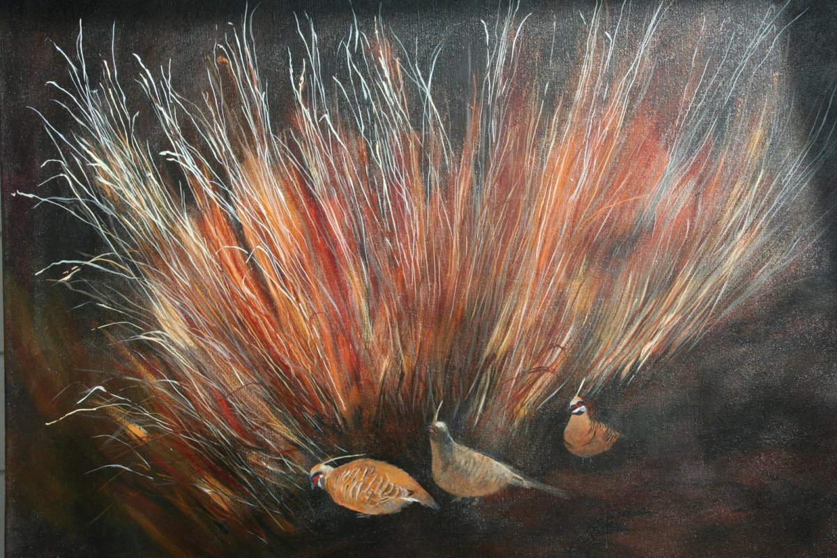 Spinifex Pigeons, painting by artist Heather Wood
